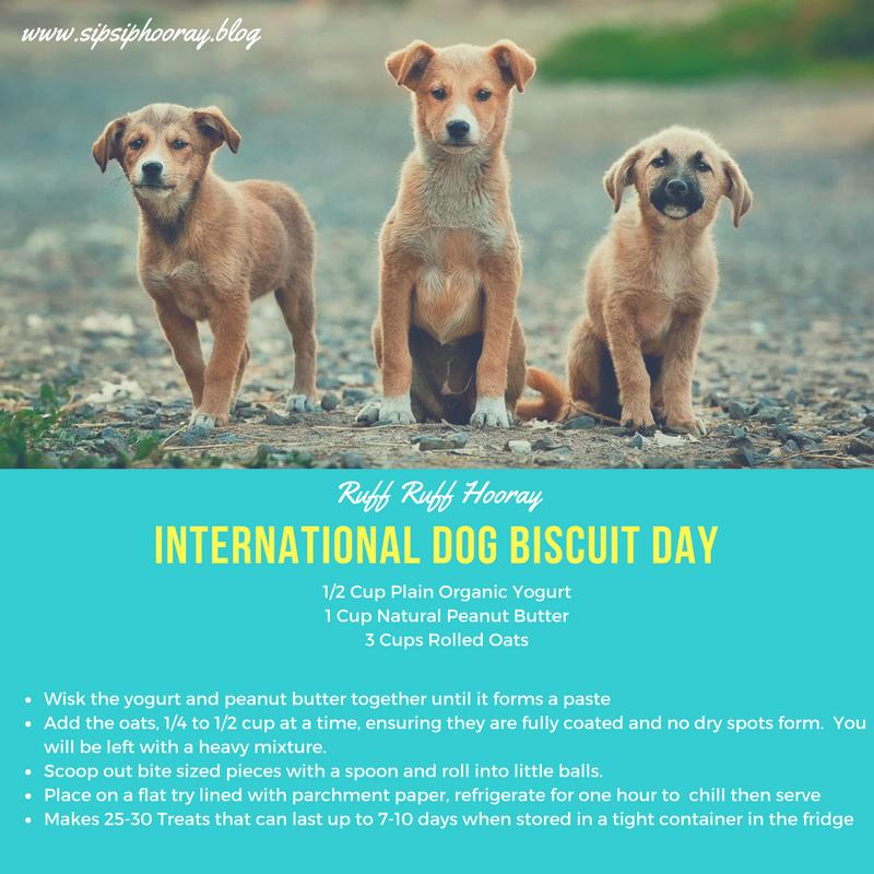 Fri 2/23: International Dog BiscuitDay